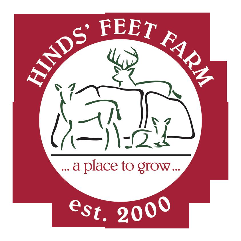 HFF logo 2021