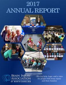 Annual-Report-2017 cover